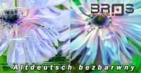 ornament-ALTDEUTSCH-BEZBAR