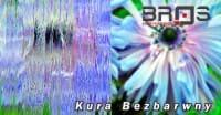 ornament-KURA-BEZBARWNY