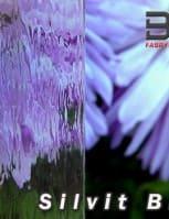 szyby-ornamentowe
