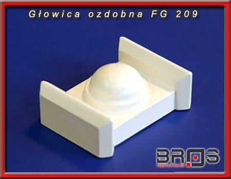 FG-209